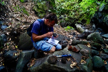 Joe examining our samples.
